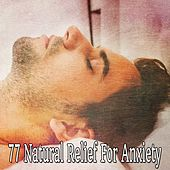 77 Natural Relief For Anxiety von Best Relaxing SPA Music
