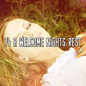 74 A Welcome Nights Rest by S.P.A