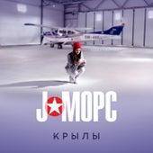 Крылы by J:Морс