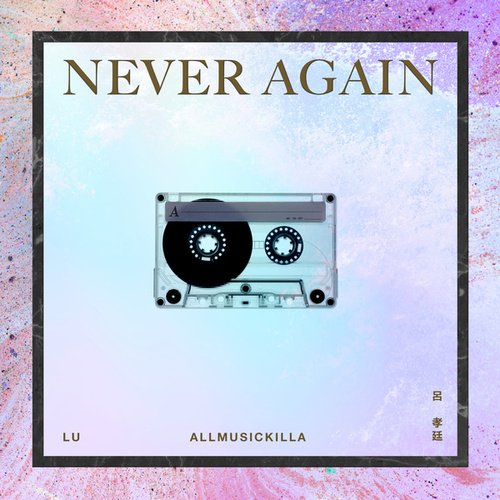 Never Again by Lu