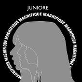 Magnifique von Juniore