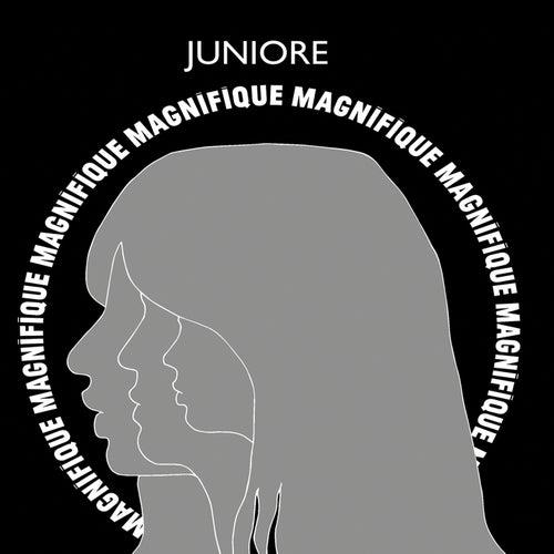 Magnifique de Juniore