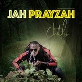 Chitubu von Jah Prayzah
