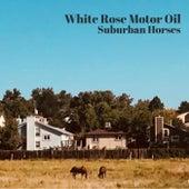 Suburban Horses de White Rose Motor Oil