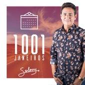 1001 Janeiros de Soleny