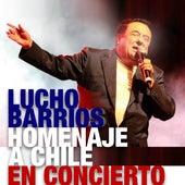Lucho Barrios: Homenaje a Chile en Concierto de Lucho Barrios