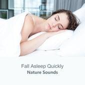 Fall Asleep Quickly: Nature Sounds by Deep Sleep Music Academy