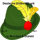 Top 30: Deutsche (Volks-)Musik in Mundart & Dialekt, Vol. 1 van Various Artists