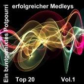 Top 20: Ein buntgemixtes Potpourri erfolgreicher Medleys, Vol. 1 by Various Artists