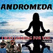 I Was Looking for You by Andromeda