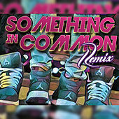 Something in Common (Remix) de Karti3r
