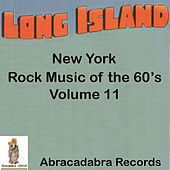 Long Island Rock Music of the 60's Volume 11 by Sonny Bottari