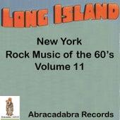 Long Island Rock Music of the 60's Volume 11 von Sonny Bottari