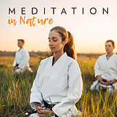 Meditation in Nature: Calm, Silent and Delicate Music for Meditation (Spiritual Walk around the Zen Garden) by Nature Sounds Relaxation: Music for Sleep, Meditation, Massage Therapy, Spa