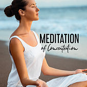 Meditation of Concentration: Respite for the Mind and Body by The Relaxation