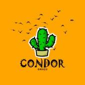 Condor von Ganzo Badsoulz