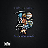 There Is No Food on Jupiter de Imfresh4life