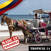 Made In Colombia / Tropical / 14 de Various Artists