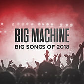 Big Machine: Big Songs Of 2018 by Various Artists