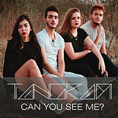 Can You See Me? von Tang-Ram