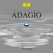 Relaxing Adagio di Various Artists