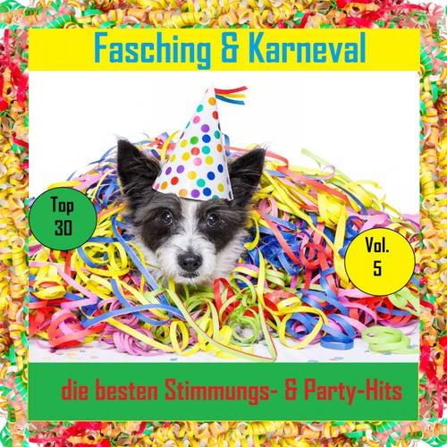 Top 30: Fasching & Karneval - Die besten Stimmungs- & Party-Hits, Vol. 5 von Various Artists