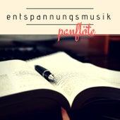 Entspannungsmusik Panflöte - CD zum Entspannen, Beruhigende Musik für Ruhe und Entspannung de Pan Flute