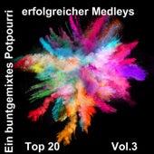 Top 20: Ein buntgemixtes Potpourri erfolgreicher Medleys, Vol. 3 de Various Artists