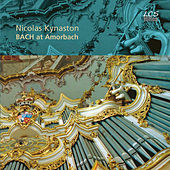 Bach at Amorbach by Nicolas Kynaston