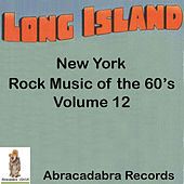Long Island Rock Music of the 60's, Volume 12 by Mud in Your Eye