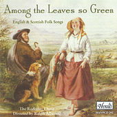 Among the Leaves so Green (English & Scottish Folk Songs) von Rodolfus Choir