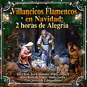 Villancicos Flamencos en Navidad. 2 Horas de Alegria by Various Artists