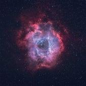 J. Stardust by J.
