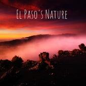 El Paso's Nature by Nature Sounds (1)