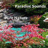Pure Nature von Paradise Sounds
