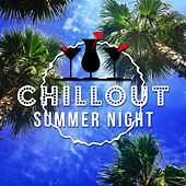 Chillout Summer Night – Chill Out Music for Summer Party, Sunrise Day, Happy Chill Out, Touch the Sky, Catch the Sun, Beautiful Sounds, Ocean Dreams, Chill Out Lounge Summer, Step by Step Toward the Sun von Chill Out