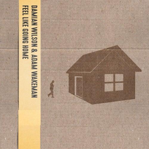 Feel Like Going Home de Damian Wilson