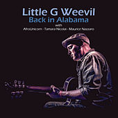 Back in Alabama by Little G Weevil