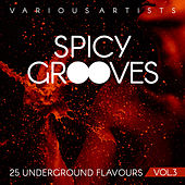 Spicy Grooves (25 Underground Flavours), Vol. 3 - EP von Various Artists