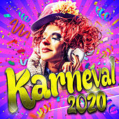 Karneval 2019 (Party Schlager Hits der Stars zum Fasching und Apres Ski 2018) de Various Artists