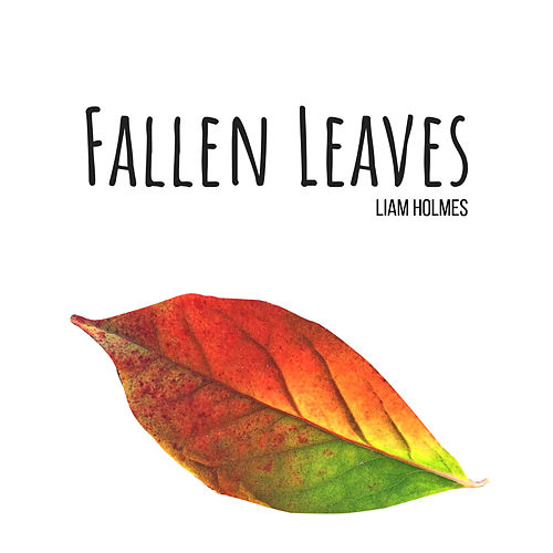 Fallen Leaves by Liam Holmes
