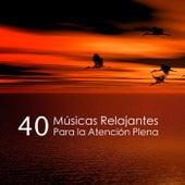 40 Músicas Relajantes Para la Atención Plena de Música Relajante Para Leer