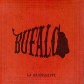 Bufalo de La Mississippi