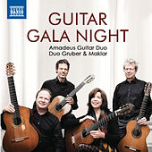 Guitar Gala Night by Various Artists
