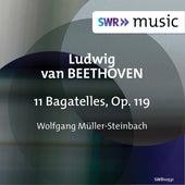 Beethoven: 11 Bagatelles, Op. 119 by Wolfgang Müller Steinbach