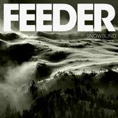 Snowblind by Feeder