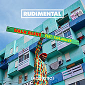 Walk Alone (feat. Tom Walker) (Acoustic) di Rudimental