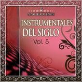 Colección Instrumentales del Siglo, Vol. 5 de Various Artists