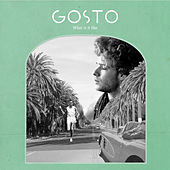 What Is It Like by Gosto