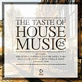 The Taste of House Music, Vol. 25 by Various Artists